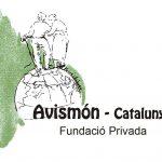 Recollida d'aliments dela Fundació Avismón.